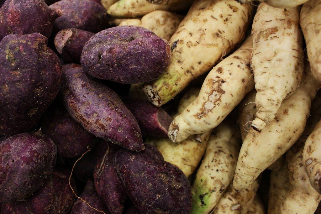 agricultural logistics in Nigeria